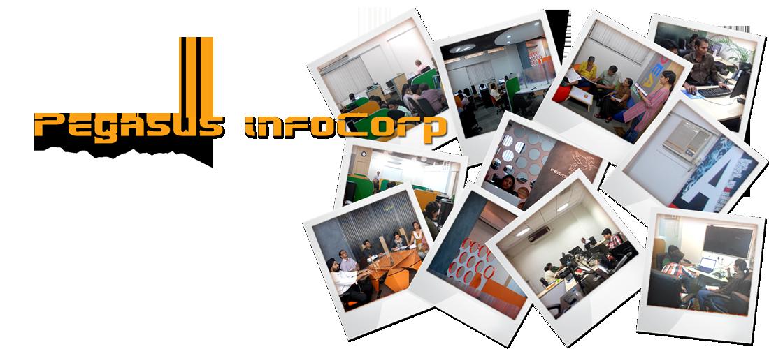 Pegasus InfoCorp - IT services, software development, web